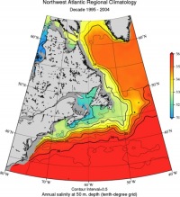 Northwest Atlantic regional Sea Water Salinity Annual fields for period of 1995-2004 at 50m depth (contributed by A. Mishonov)